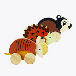 1704-Animales fauna salvaje combinación